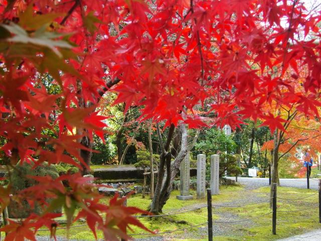 Kyoto,Nara 11.2009 401