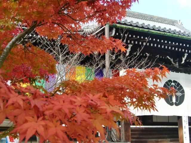 Kyoto,Nara 11.2009 515
