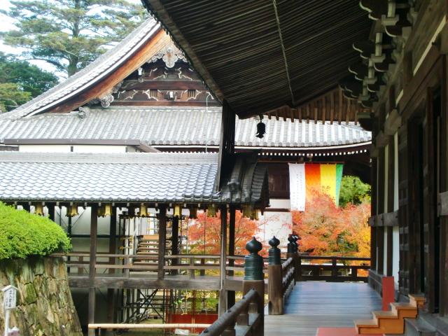 Kyoto,Nara 11.2009 523
