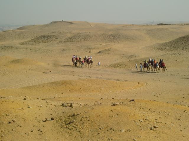 Egypt 10.2010 1088