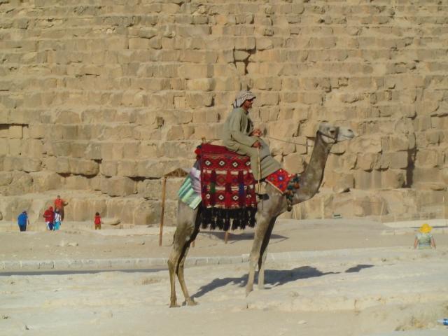 Egypt 10.2010 1131