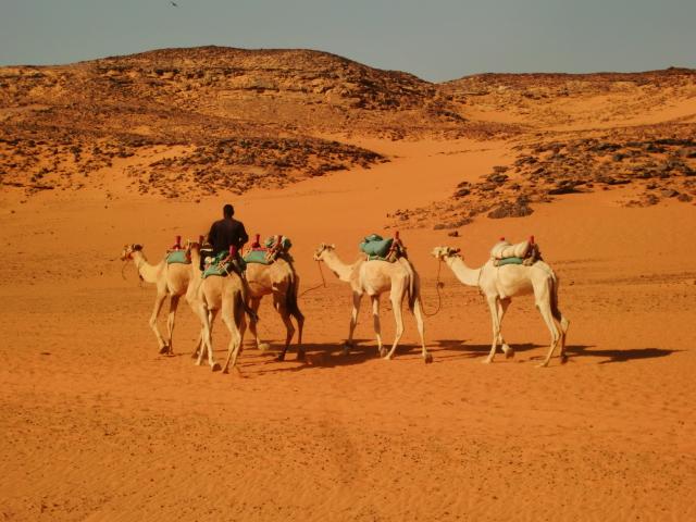Egypt 10.2010 968