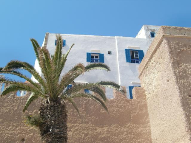 Morocco 239