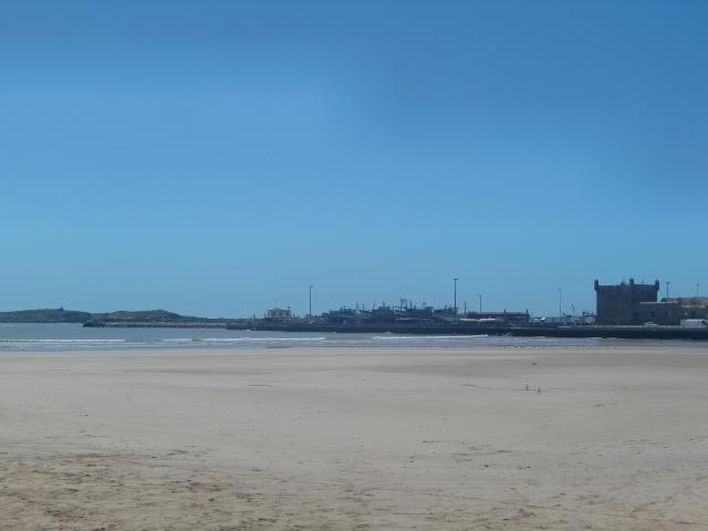 カモメが飛び交うモロッコの港町エッサウィラ
