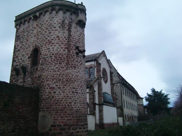 クリスマス前に訪れたい!アルザスの可愛い村~Obernaiオベルネ~