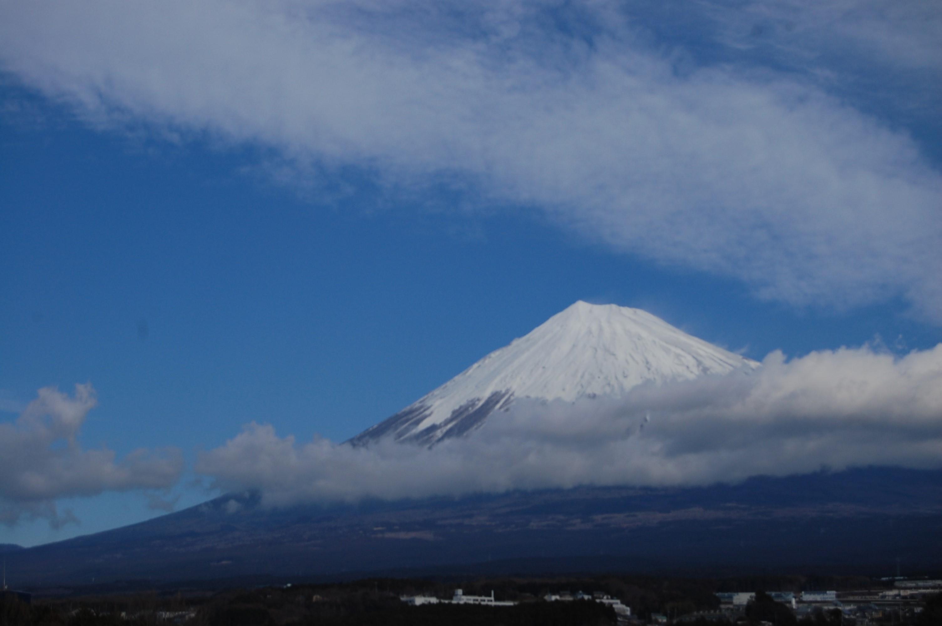 日本の年末年始、熱田神宮となばなの里
