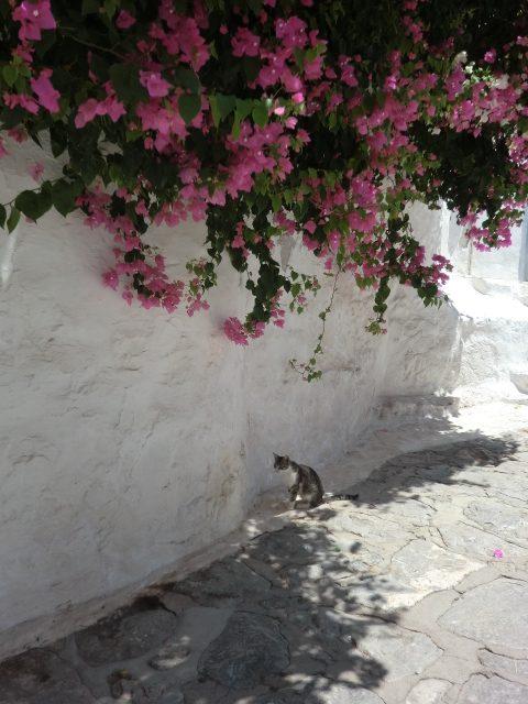 Greece 07,2012 141
