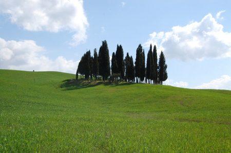 トスカーナの極上ドライブ!青い空と緑の丘とサンタンティモ修道院